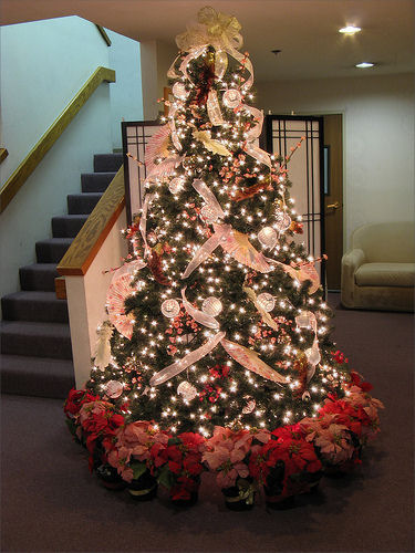 Christmas decoration tips for black christmas tree Ideas for decorating a christmas tree