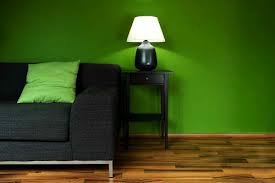 Eco-friendly Living Room (1)