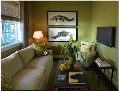 Eco-friendly Living Room (5)