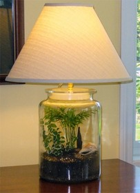 echo table lamp with fillable base you can make this lamp elegant by. Black Bedroom Furniture Sets. Home Design Ideas