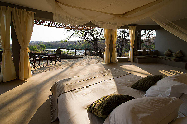 decorate safari themed bedroom interior