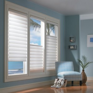 metallic-window-blinds-e1320395588741