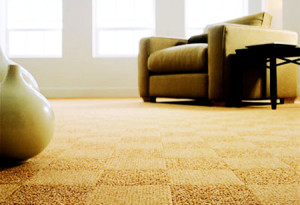 carpet picture