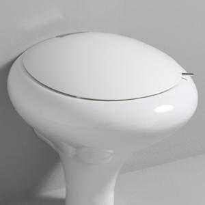 Toilet Seat For Your Bathroom Interior Designing Ideas
