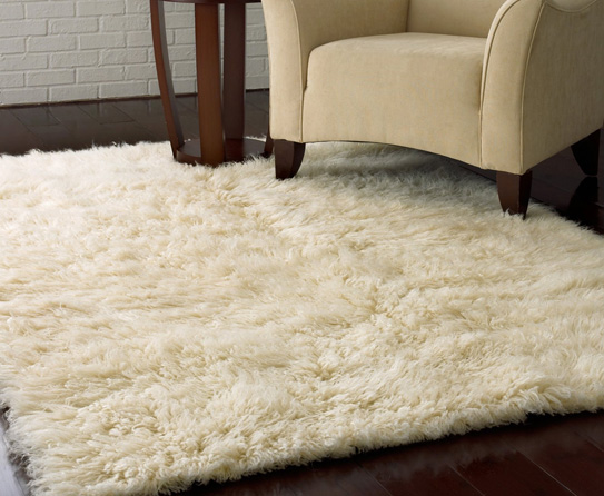 Carpets and Rugs (3)