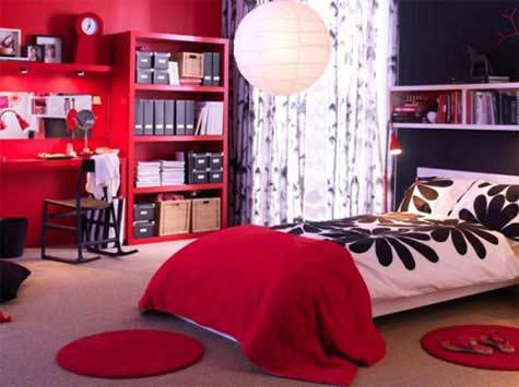 teenage contemporary bedrooms (2)