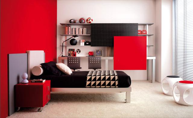 teenage contemporary bedrooms (5)