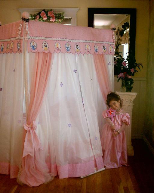Disney Canopy Beds Interior Designing Ideas