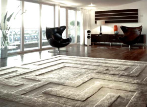 rugs500x365