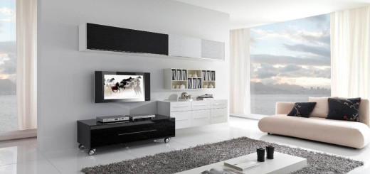 17-Inspiring-Wonderful-Black-and-White-Contemporary-Interior-Designs-Homesthetics-151