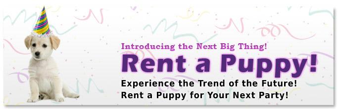 rent-puppy-banner_sm