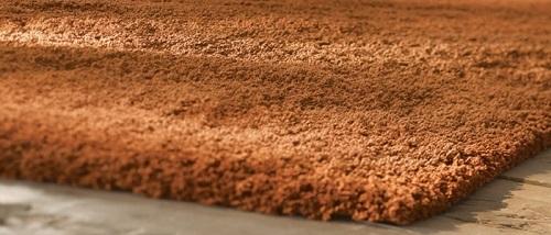 rusty carpet use jpg